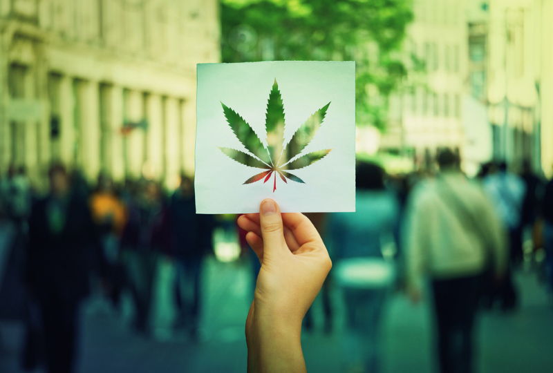 What You Can Learn From Marijuana Marketers